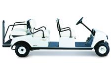 6 passenger cart used