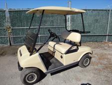 tan 2 passenger cart used