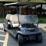 custom stretch cart